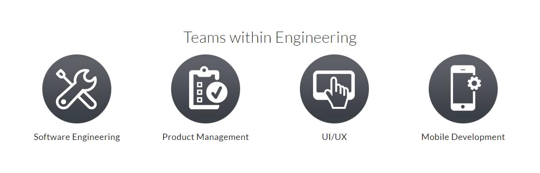 appian-engineering-teams