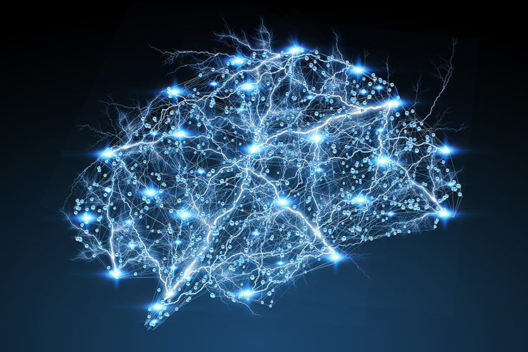 Neural network in the shape of a brain
